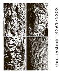 Tree Bark Vector