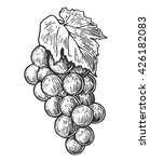 bunch of grapes. black vintage...   Shutterstock .eps vector #426182083
