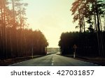 asphalt road and forest | Shutterstock . vector #427031857