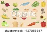 organic nutrition nature... | Shutterstock . vector #427059967
