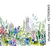 watercolor wild herbs and... | Shutterstock . vector #427090843