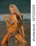 sexy beach bikini girl | Shutterstock . vector #427222333