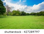 Green lawn with blue sky and clouds in park