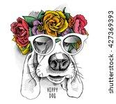 basset hound hippie portrait in ... | Shutterstock .eps vector #427369393