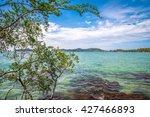 beautiful tropical island beach ... | Shutterstock . vector #427466893
