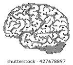 vector human brain made of... | Shutterstock .eps vector #427678897