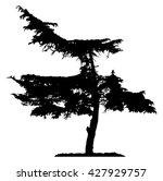 pine tree silhouette | Shutterstock .eps vector #427929757
