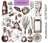 vector collection of perfumes... | Shutterstock .eps vector #427978357