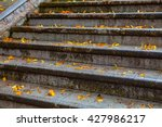 old stone staircase covered... | Shutterstock . vector #427986217