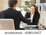 businesspeople handshaking...   Shutterstock . vector #428013427