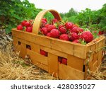 Red Strawberries In A Wooden...