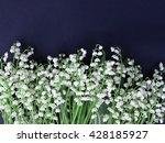 lily of the valley on dark... | Shutterstock . vector #428185927