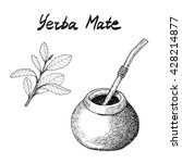yerba mate tea branch and... | Shutterstock .eps vector #428214877