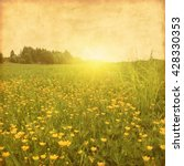 spring field at sunset in... | Shutterstock . vector #428330353