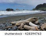 Driftwood On Hidden Beach