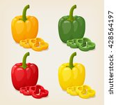 vector set of colored yellow... | Shutterstock .eps vector #428564197