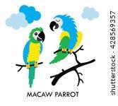 cartoon african macaw birds.... | Shutterstock .eps vector #428569357