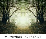 surreal forest path | Shutterstock . vector #428747323
