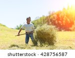 woman farmer turns the hay with ... | Shutterstock . vector #428756587