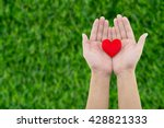 Heart In The Hand On Grass...