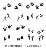 tracks of wild animals and... | Shutterstock .eps vector #428840917