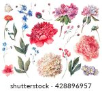 set of watercolor white  pink ... | Shutterstock . vector #428896957