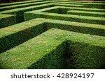 grass lawn cut into a maze like ... | Shutterstock . vector #428924197