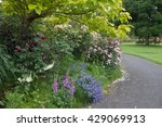 a springtime path with a... | Shutterstock . vector #429069913