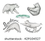 Set Of Hand Drawn Illustration...