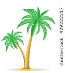 palm tree illustration isolated ... | Shutterstock . vector #429222217