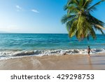 boy playing at punta uva beach... | Shutterstock . vector #429298753