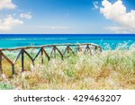 beautiful sea coast with wild... | Shutterstock . vector #429463207