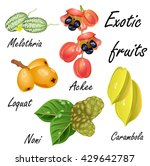 set of exotic fruits  melothria ... | Shutterstock .eps vector #429642787