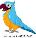 cute parrot cartoon | Shutterstock .eps vector #429715663