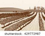 hand drawn vineyard | Shutterstock .eps vector #429772987