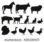 Stock vector vector set of silhouettes of farm animals isolated on white background livestock and poultry 430100437