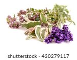 healthy herbs on white...   Shutterstock . vector #430279117