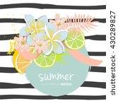 citrus lemon and lime fruit... | Shutterstock .eps vector #430289827