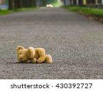 Lost Teddy Bear Lying Alone On...