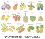 set of tropical fruits.... | Shutterstock .eps vector #430402663