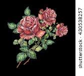 rose color pencil  bouquet ... | Shutterstock . vector #430538257