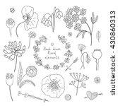 hand drawn vintage decoration... | Shutterstock .eps vector #430860313