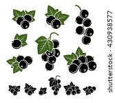 black currant set. vector | Shutterstock .eps vector #430938577