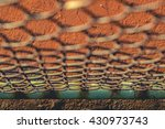 metal fence with court in the... | Shutterstock . vector #430973743