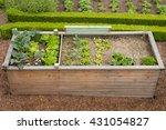 raised bed gardening | Shutterstock . vector #431054827