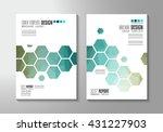 brochure template  flyer design ... | Shutterstock .eps vector #431227903