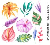 set of watercolor hand painted... | Shutterstock . vector #431312797