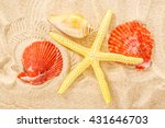 fingerfish  seastar and... | Shutterstock . vector #431646703