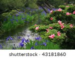 Iris's and Azaleas by a stream in Japan - stock photo