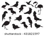 outline design vector birds...